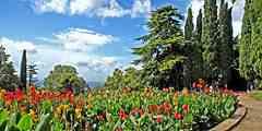 Новые экскурсии в Никитском ботаническом саду Ялты
