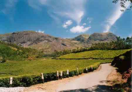 Муннар - отдых в горах Индии